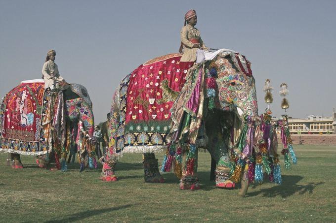 Novaturo nuotr./Indija