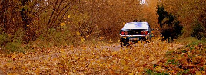 Asmeninio archyvo nuotr./Mazda RX-4