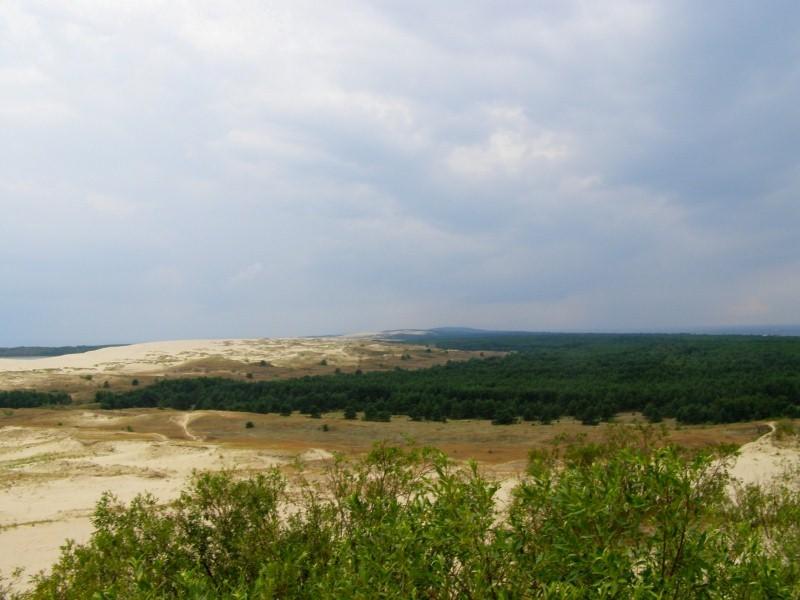 Nida (Parnidžio kopa)