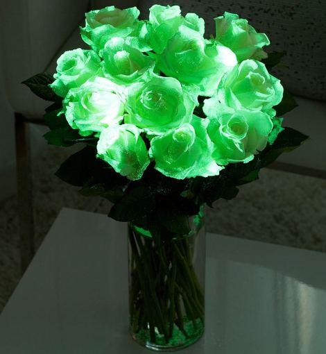 """interflora.co.uk nuotr./Švytinčių rožių """"Avalanche"""" puokštė"""