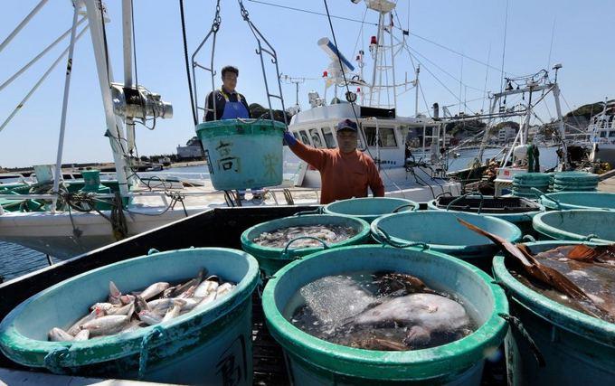 AFP/Scanpix nuotr./Net ir praėjus daugiau kaip metams nuo nelaimės, žuvyje aptinkama raadiacinių dalelių.