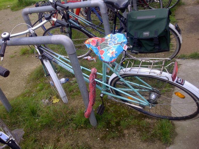 Medeinos Čijauskaitės nuotr./Mano papildomas dviratis pirktas Olandijoje atvažiuojantiems lankyti draugams - 70 eurų