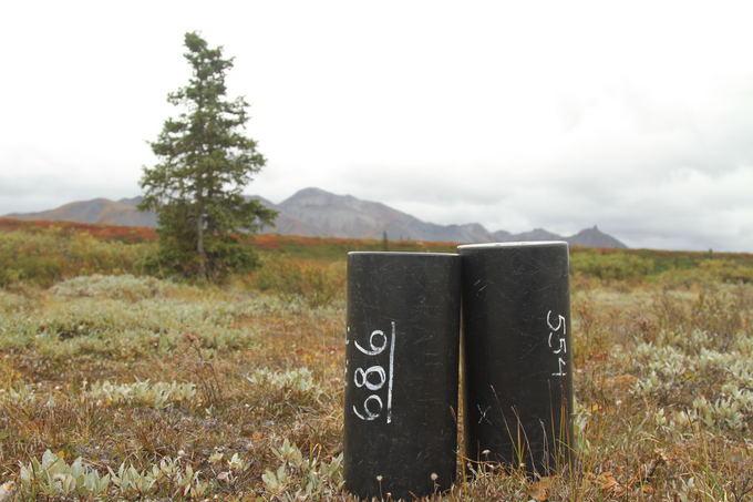 Evelinos ir Karolio nuotr./Konteineriai, kuriuos duoda nemokamai parko vadovybė. Sveria apie 2 kg ir kiekviename galima sutalpinti iki 10 d. maisto