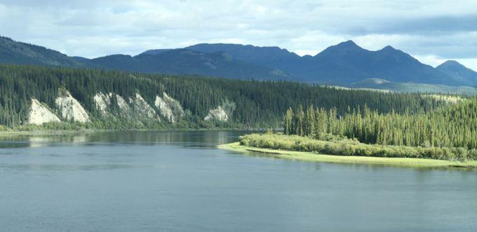 Evelinos ir Karolio nuotr./Ne kaip Aliaskoje, čia daugybė ežerų ežerėlių. Kartais labai primindavo Lietuvą