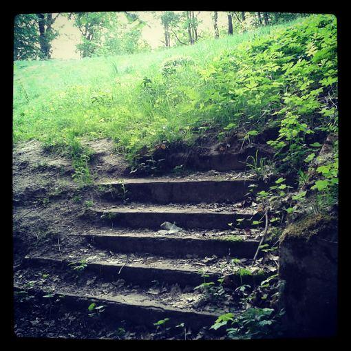 Liudo Basiulio nuotr./Laiptai į niekur netoli nuo Rokantiakių piliavietės