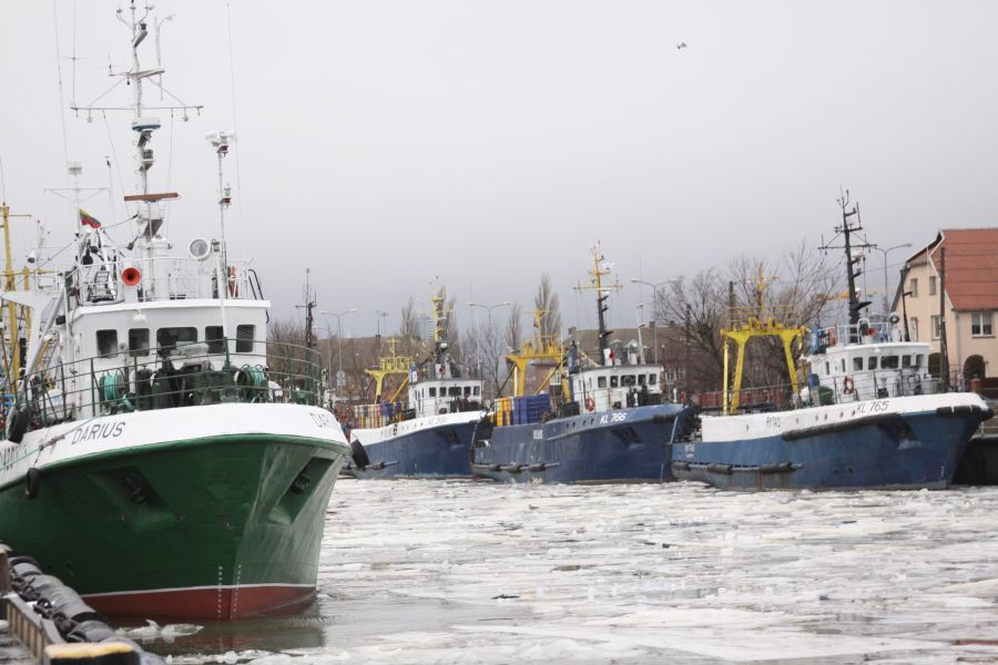 Žvejybiniai laivai