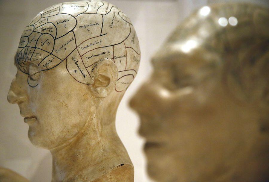 Žmogaus smegenų funkcionavimas yra viena didžiausių žmonijos paslapčių.