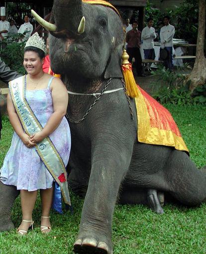 Scanpix nuotr. / Mis dramblių karalienė