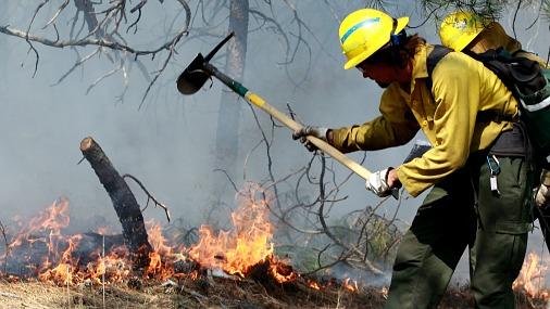 В Колорадо из-за пожаров эвакуировали 40 тысяч человек