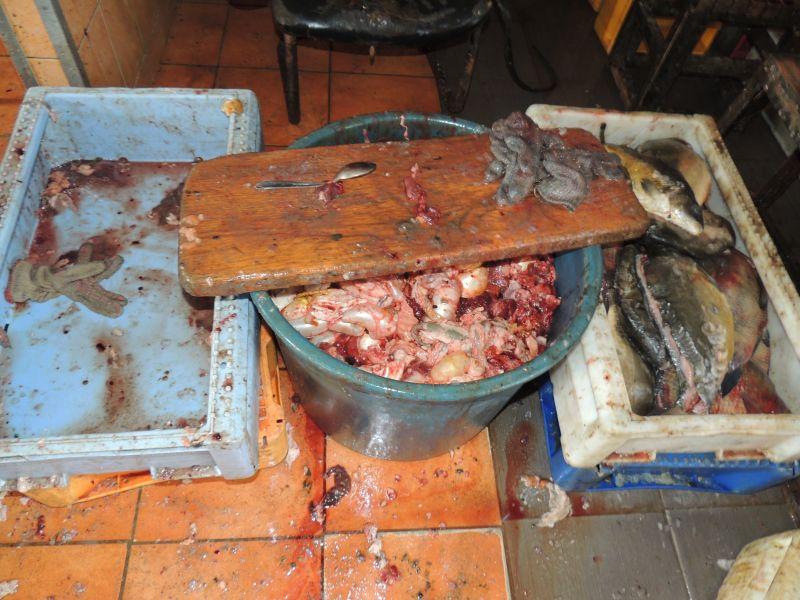 Policijos radiniai žuvies perdirbimo fabrikėlyje