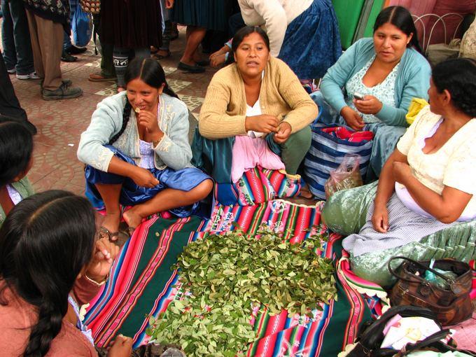 M.Gaubytės nuotr./Čiolitos (tradiciakai dėvinčios kečujės) vaiainasi kokainmedžio lapeliais