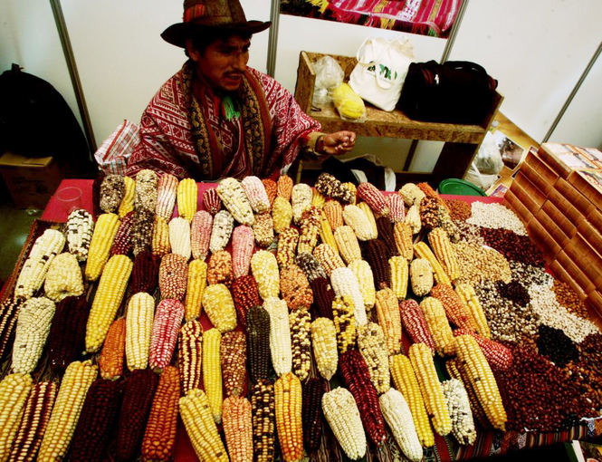 Mistura festivalis  tai Limoje, Peru kasmet vykstanti maisto aventė