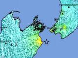 USGS iliustr./Žemės drebėjimas Naujojoje Zelandijoje