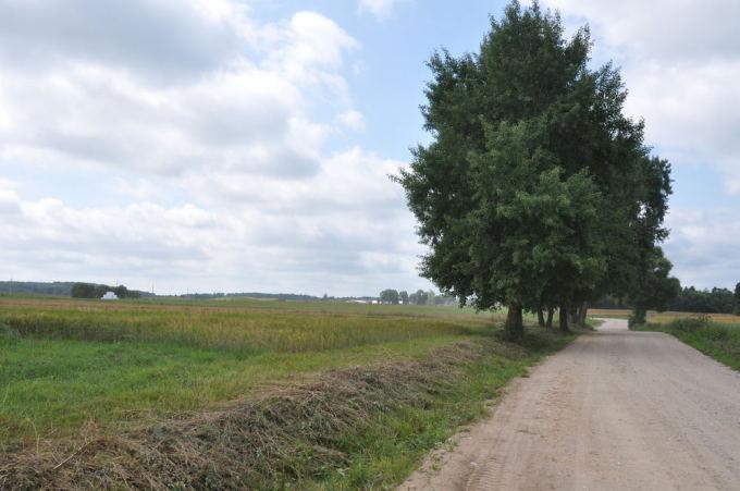 Donatos Kazlauskienės nuotr./Uoliausiai aplinką prižiūri ir dirba biržuvėniakiai.