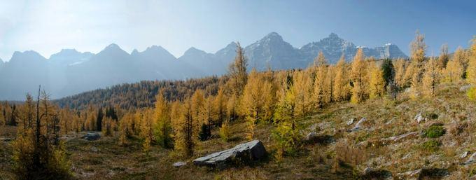 L.Pamparaitės nuotr./Kalnų gamta