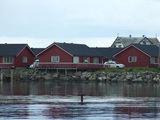 Andoy saloje eančio Andenes uosto apylinkės garsėja tuo, kad čia dažnai sugaunami otai