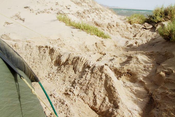 Evelinos ir Karolio nuotr./Mūsų lankytose vietose prie Raudonosios jūros pūtė labai stiprus vėjas, tad pastačius palapinę reikėjo ir bortelius nakčiai statyti, kad nenupūstų mūsų.