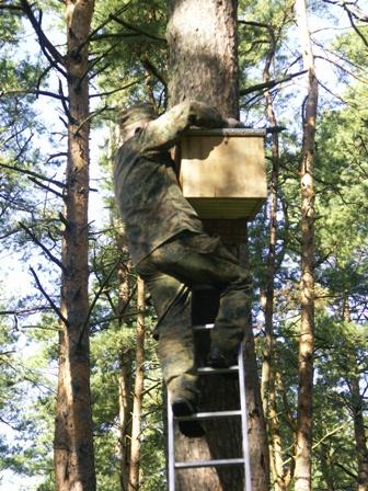 nerija.lt nuotr./Kuršių nerijoje iškelta 120 inkilų šikšnosparniams.