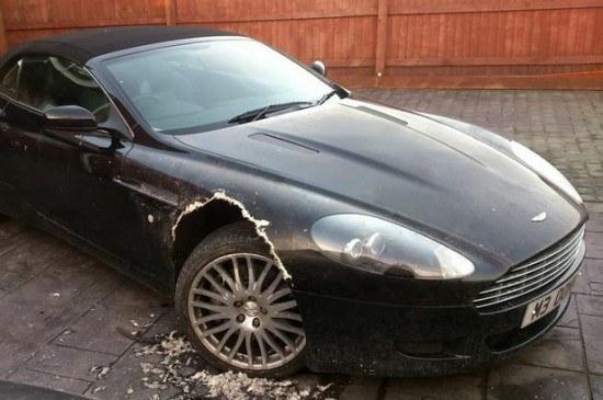 "Roystono Grimsteado nuotr./Šuns apgraužtas ""Aston Martin"""