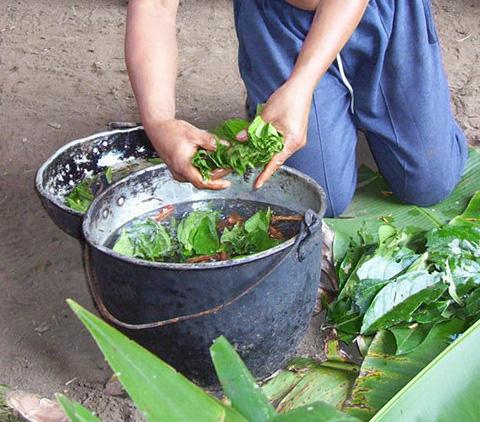 Wikimedia.org nuotr./Ahajusakos gamyba