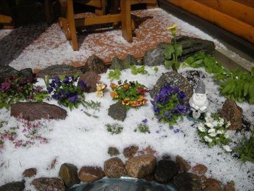 Vilmos Digimienės nuotr./Į Pociūnus sugrįžusi žiema