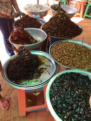 Sandros Voskaitės nuotr./Kambodža. Gatvėje pardavinėjami kepti vabalai, tarantulai, žiogai ir vabzdžių lervos.