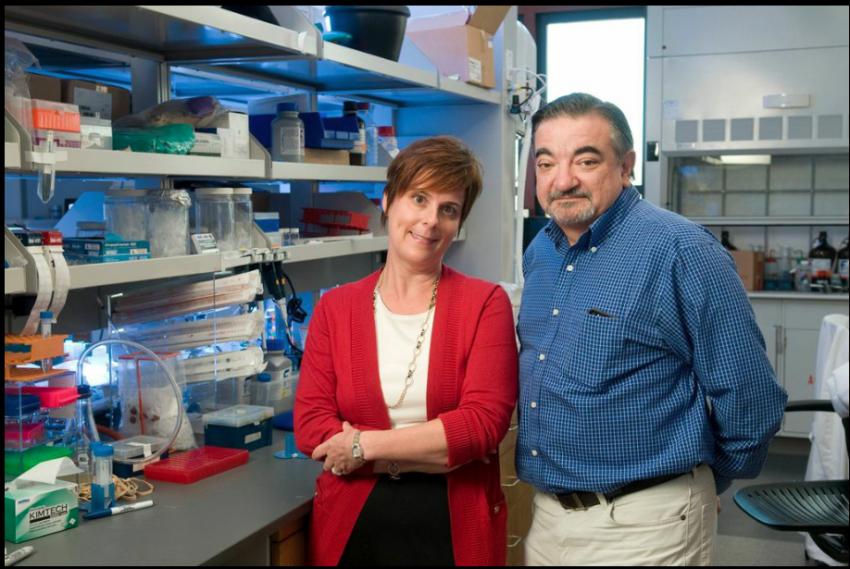 Jennifer Cochran ir Amato Giaccia tyrimas gali padėti užkirsti kelią vėžio plitimui organizme
