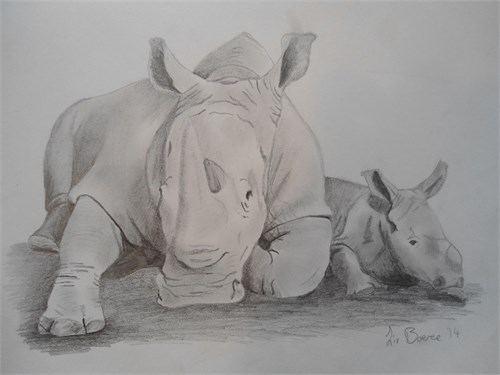 L.Boeree piešiniai