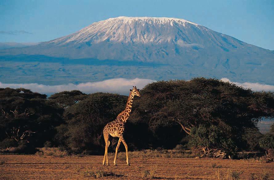 Kilimandžaras | NUOTRAUKA | 15min.lt