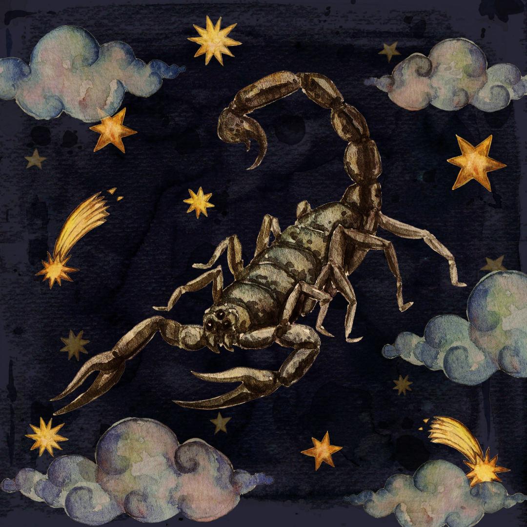 Skorpionas numesti svorio