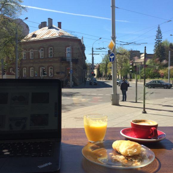 Strelkabelka nuotr. /Vaizdas pro kavinės langą