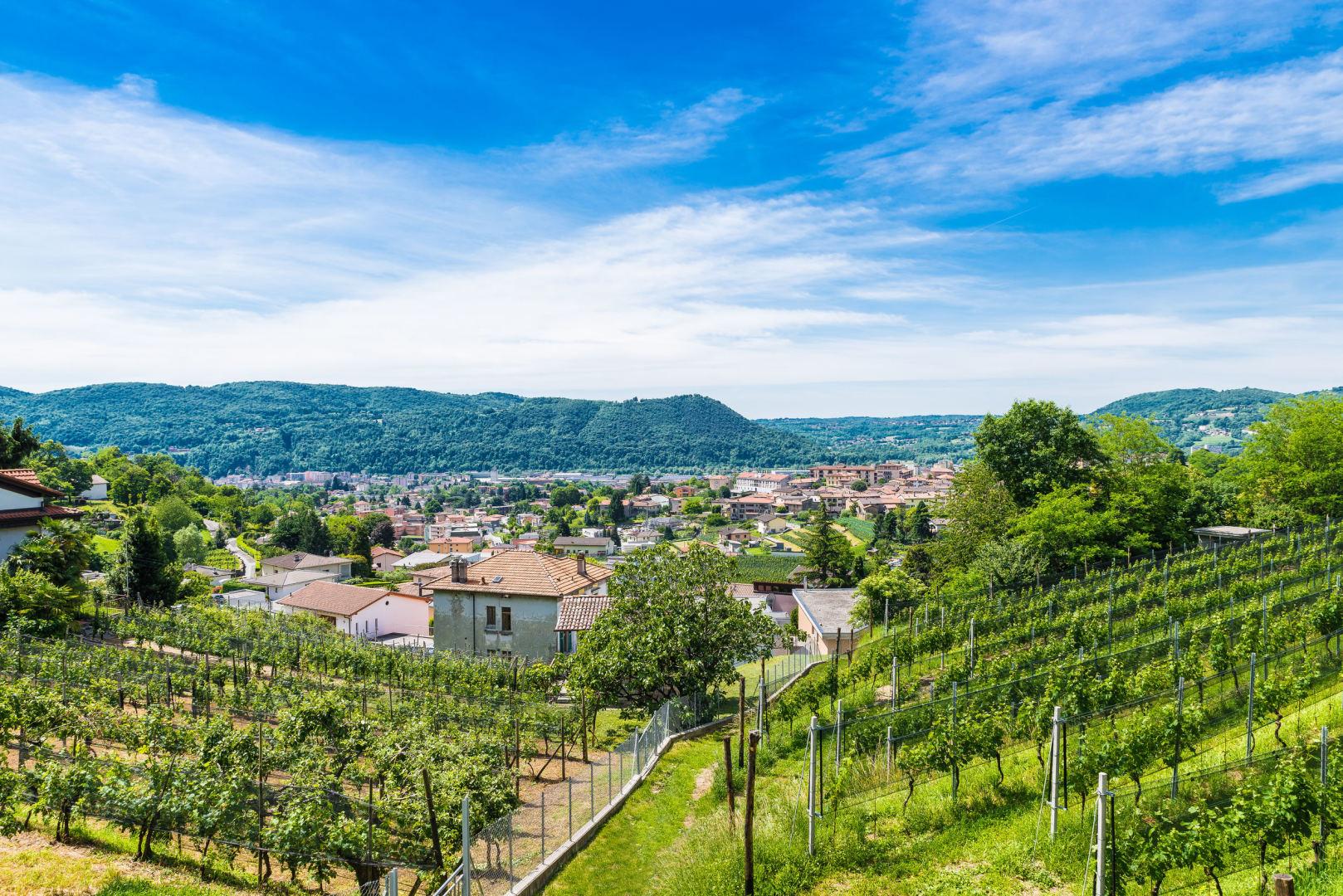 akcijų pasirinkimo mokesčių mokestis šveicarija
