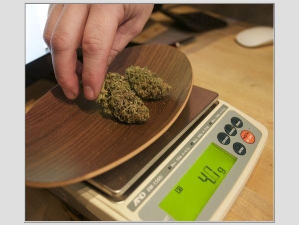 Medicininė marihuana JAV