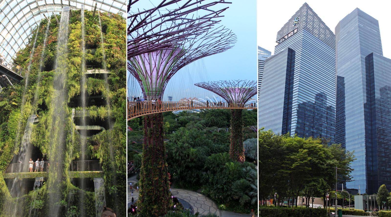 geriausias pasirinkimas prekybos platforma singapūras