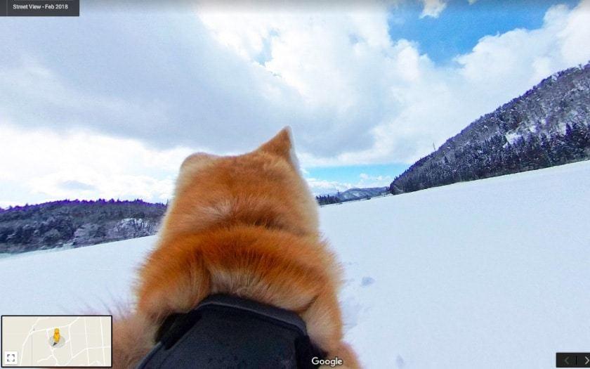 """Japonijoje """"Google Street View"""" – iš šuns perspektyvos"""