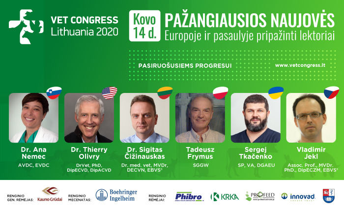 KG Vet Congress 2020