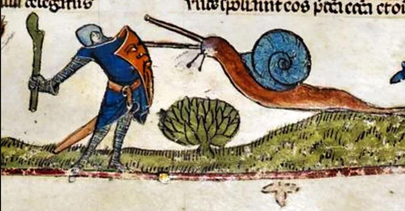 Riterio, kovojančio su sraige, piešinys