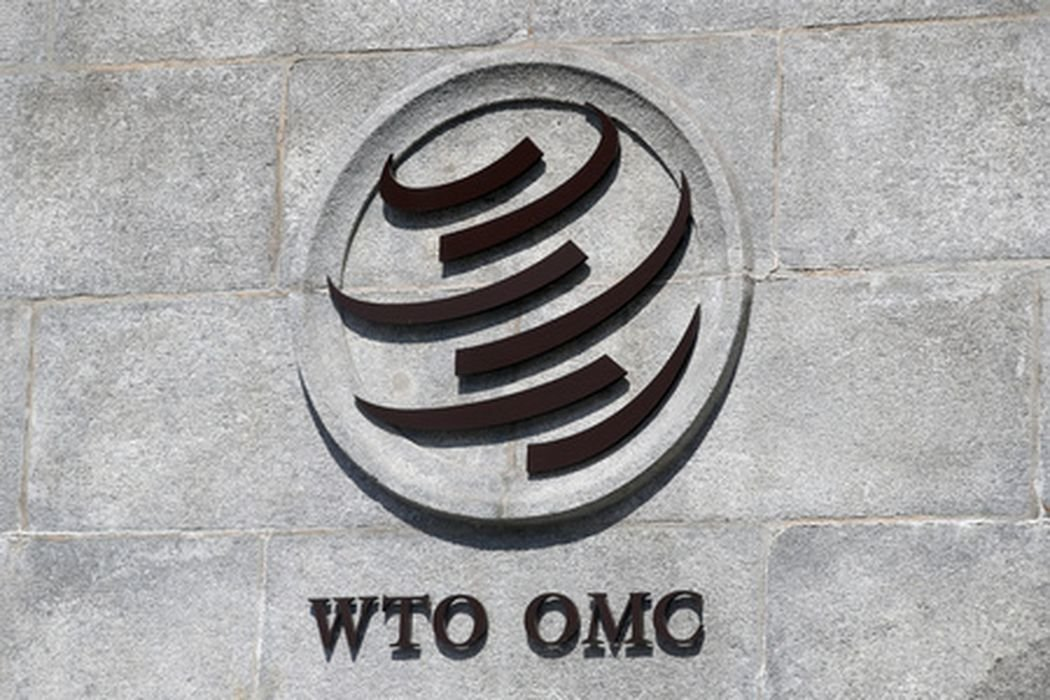 pasaulio prekybos organizacijos balsavimo sistema