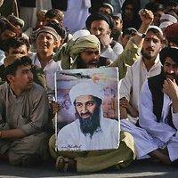 Osamos bin Ladeno šalininkai
