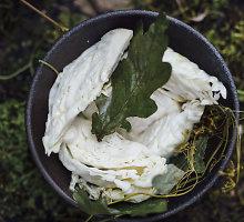Rauginti kopūstų ketvirčiai su krienais ir ąžuolo šakelėmis