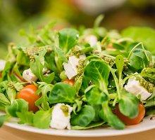 Lapinės salotos su ožkos sūriu ir pesto padažu