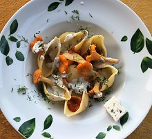 """Conchiglioni"" pasta su voveraitėmis ir pelėsiniu sūriu ""gorgonzola"""