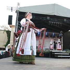Aurelijos Kripaitės nuotr. /Suvalkų tautinės juostos.