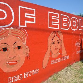 """AFP/""""Scanpix"""" nuotr./Liberijos menininkas Stephenas Doe ant sienos nupiešė Ebolos viruso simptomus."""