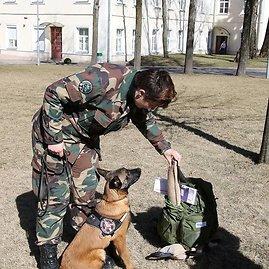 VSAT nuotr./Pasieniečių tarnybinių šunų būrį papildė jaunutė belgų aviganė Frambos Judith