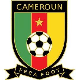 Cameroon_2010crest