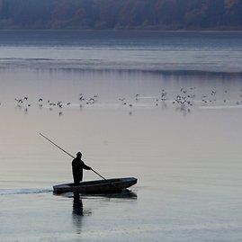"""""""Reuters""""/""""Scanpix"""" nuotr./Tradicinė karpių žvejyba Čekijoje"""