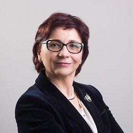Projekto partnerio nuotr./V.Škudienė