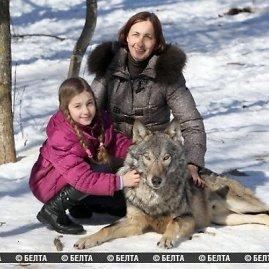 belta.by nuotr./Žmonių prijaukinti vilkai