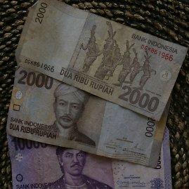 Viktorijos Panovaitės nuotr./14 000 rupijų – beveik 1 euras